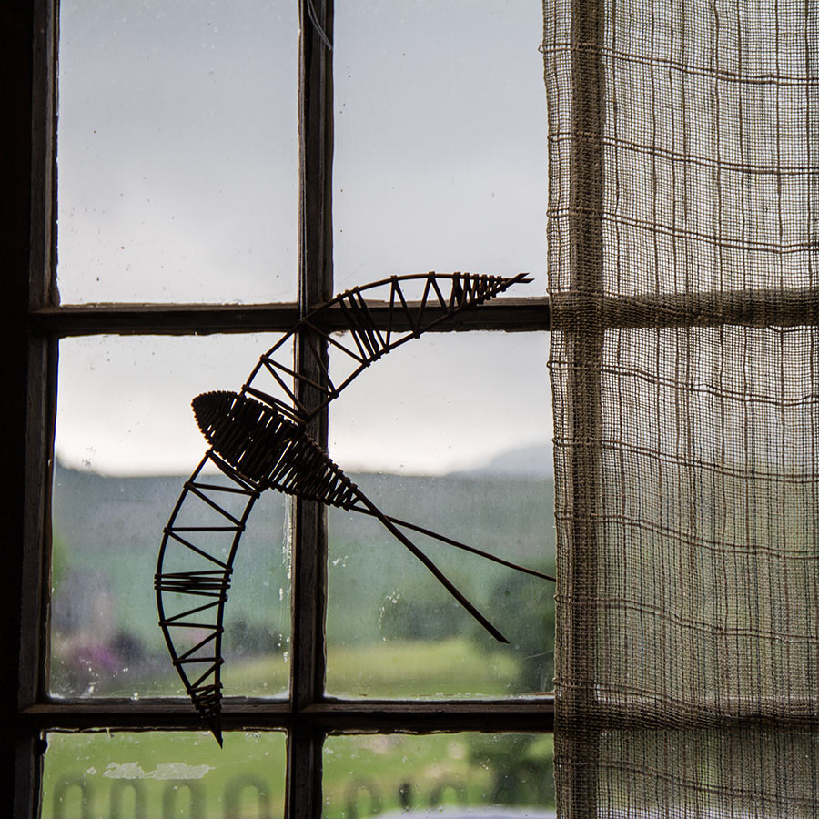 Laura's Loom, Homepage, Bird window