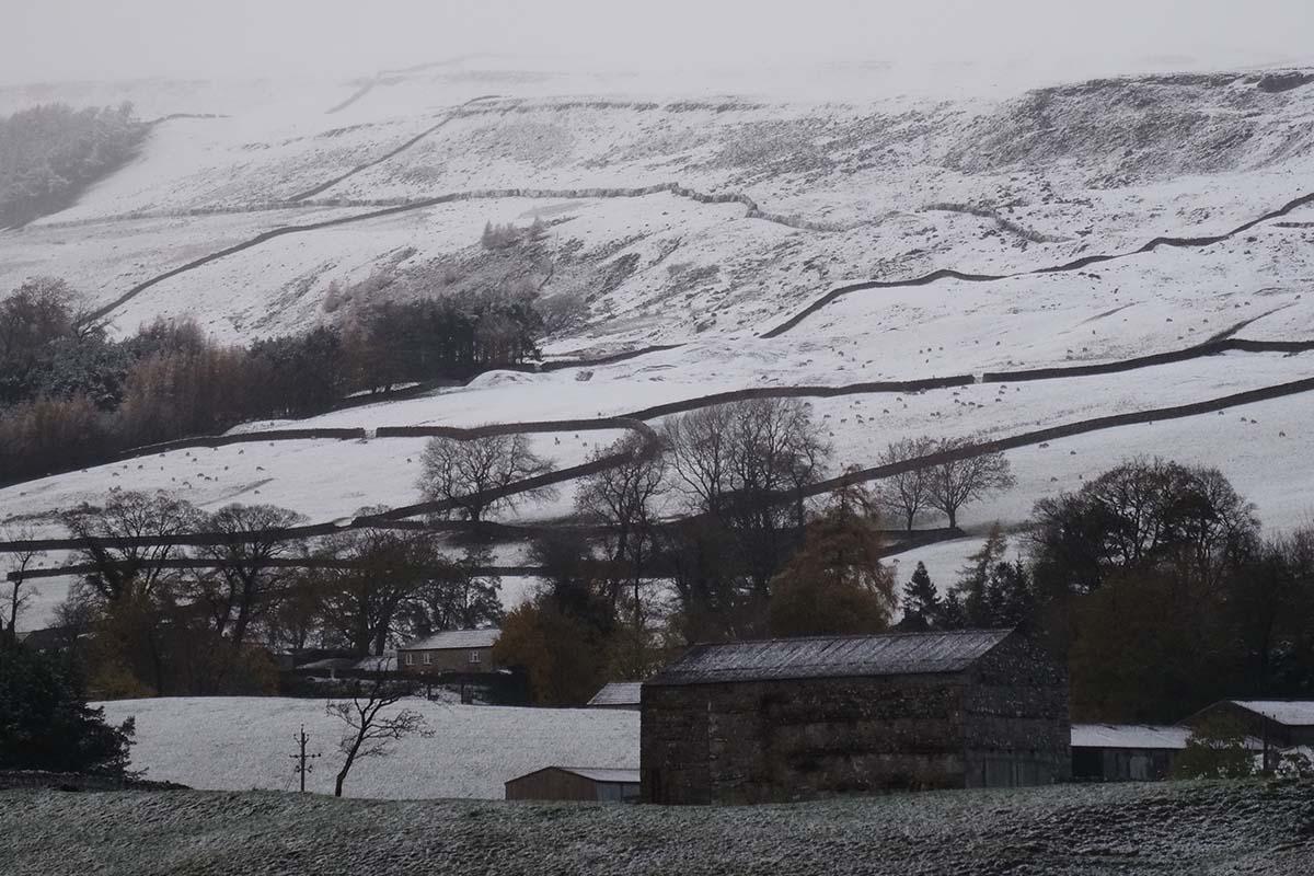 Lauras loom snowy landscape farm yorkshire